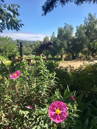 Vista Botanical Gardens